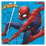 Spiderman magisches Tuch 30*30 cm