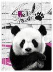 Panda A/4 Gummi-Ordner